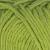 205 Kiwi